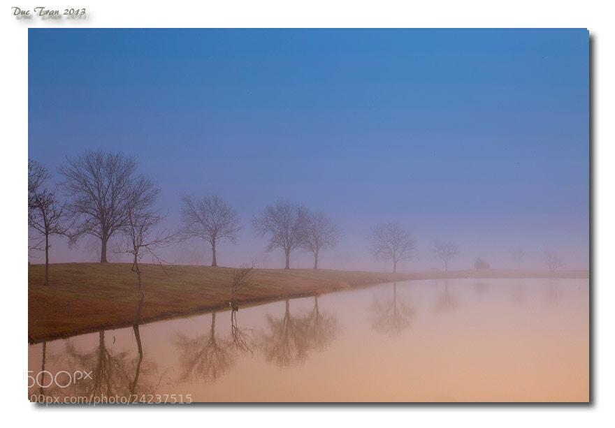 Photograph Foggy Dusk by Duc Tran on 500px