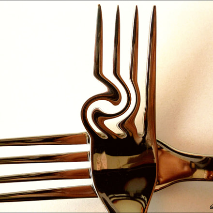 the Functional Spaghetti Fork, Panasonic DMC-ZS8