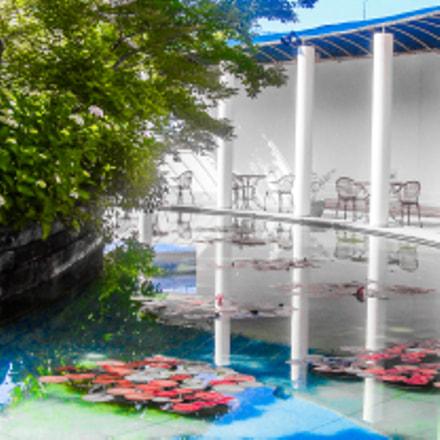 Dinners Paradise, Sony DSC-T77