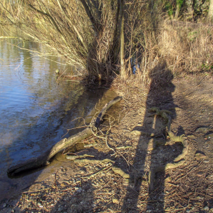 Me and my shadow, Fujifilm FinePix S1900