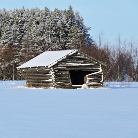 A hovel on the, Nikon COOLPIX P600