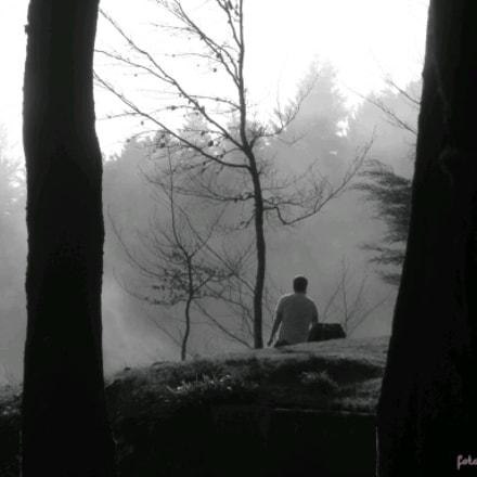 Lost on the fog, Canon IXUS 165