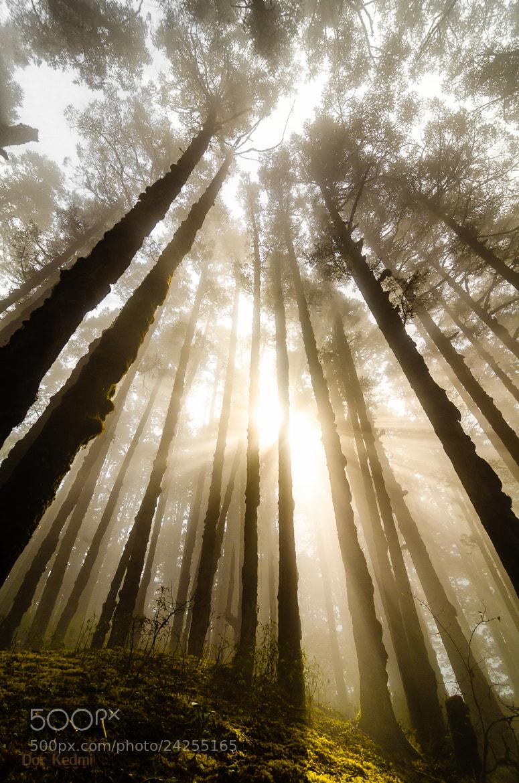 Photograph Let The Sun Rise by Dor Kedmi on 500px
