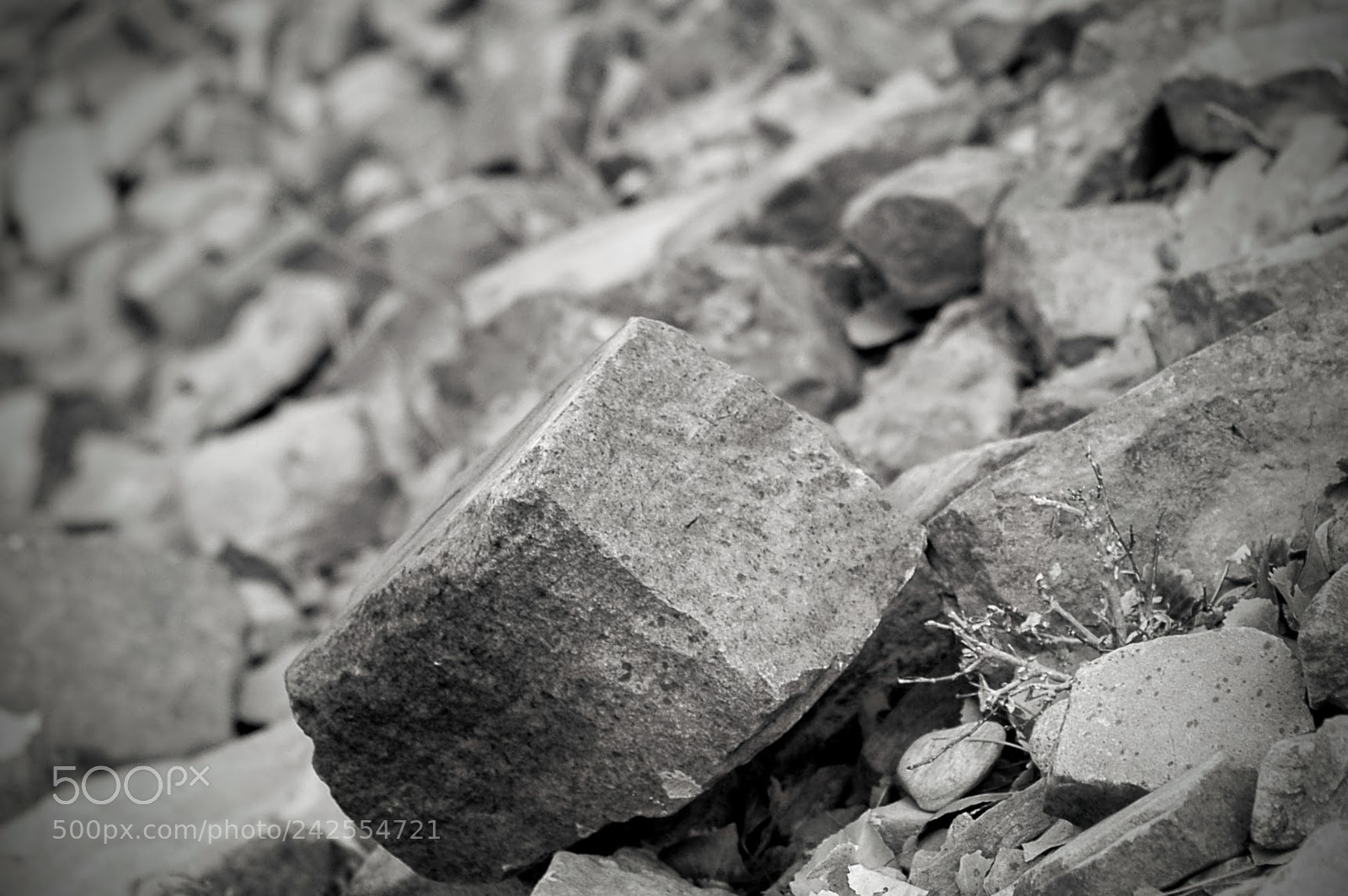 Untitled, Nikon D70, AF Nikkor 50mm f/1.8 N