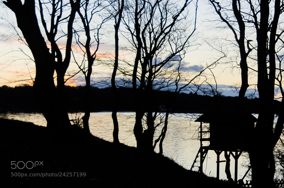 Photograph treehouse silhouette by Matze Katze on 500px