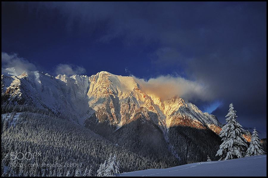 Photograph Last winter memories by Zsolt Kiss on 500px