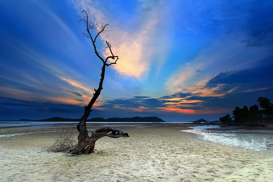 Photograph Alone by Danis Suma Wijaya on 500px