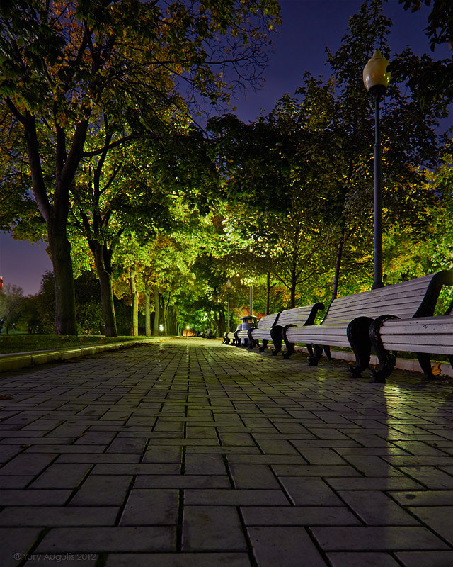 Photograph Alley near the Novodevichy Convent in Moscow by Yury Augulis on 500px