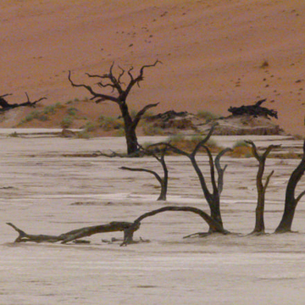death valley namibia, Panasonic DMC-FZ100