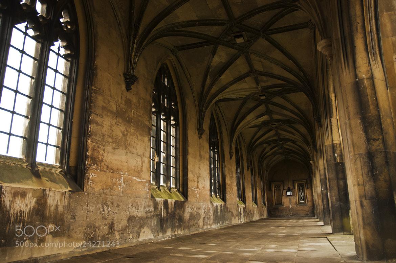 Photograph St John's College Cambridge by Magdalena Warmuz-Dent on 500px