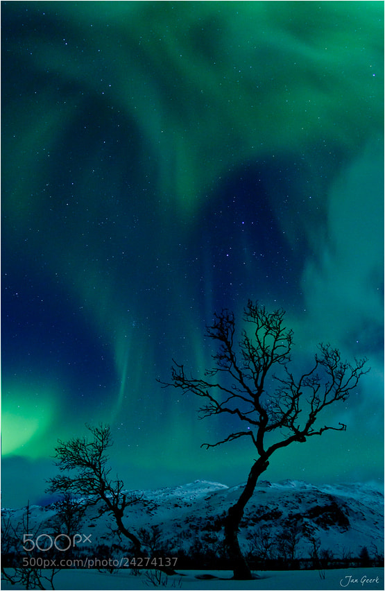 Photograph The Heart of the Northern Lights by Jan Geerk on 500px