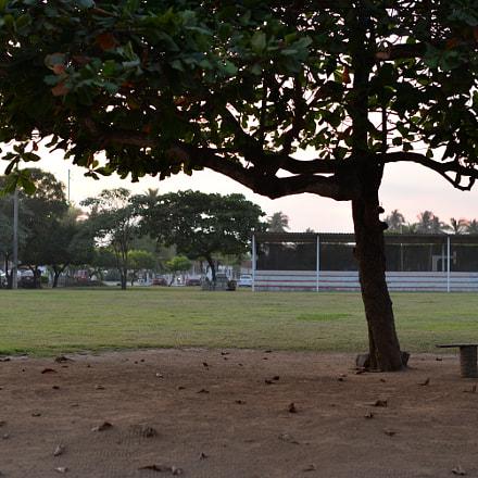Cancha, Nikon D610, AF-S Nikkor 50mm f/1.4G
