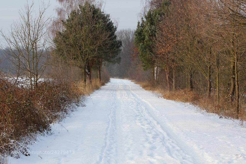 Photograph winterday by Ralf Muhl on 500px