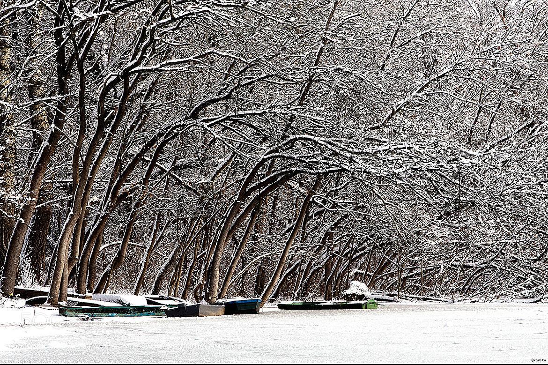 Photograph Frozen landscape by F Levente on 500px