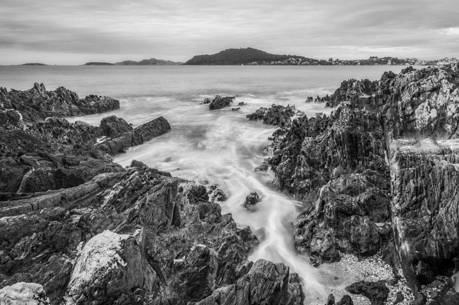 Black and white Monte Lourido