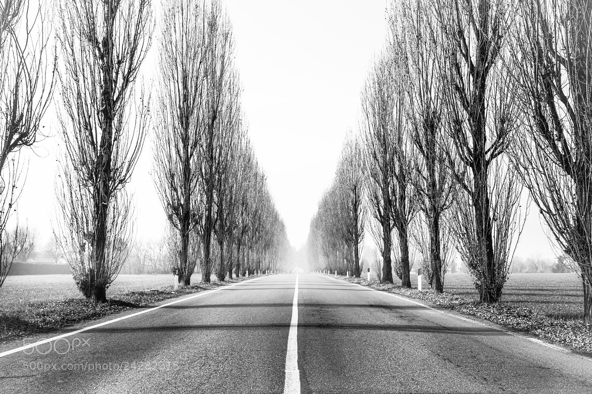 Photograph The Long Long Way by Emanuele Colombo on 500px