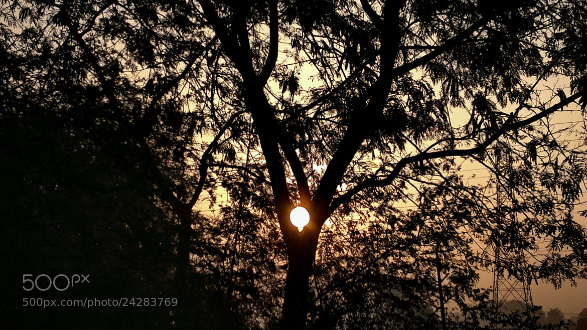 Photograph Trapping the Sun by Rakesh  Hegde on 500px