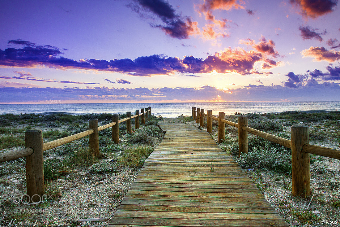 Photograph Sunset beach by F Levente on 500px