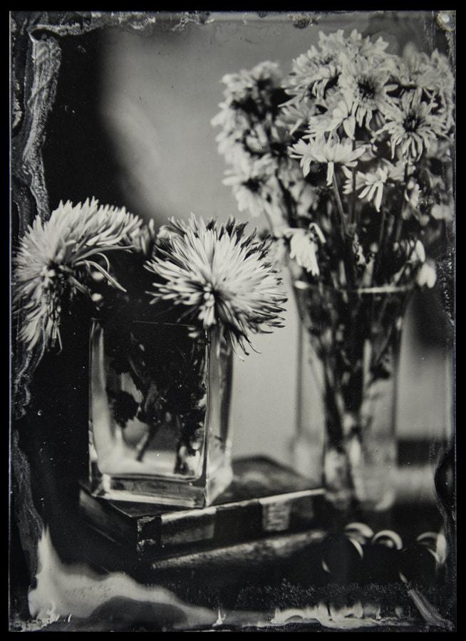 Flowers 1.14.18