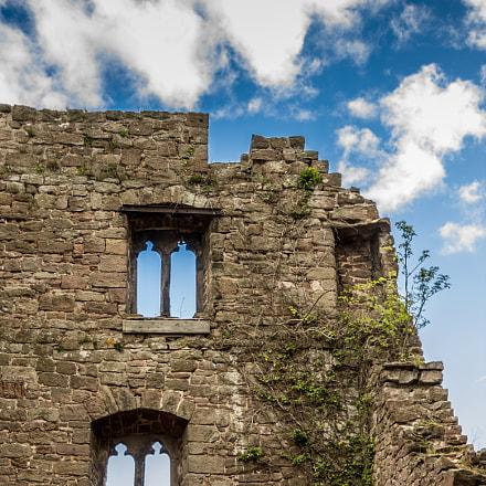 Ruin of Castle Hanstein