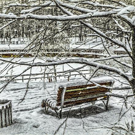 Зимним днём в парке., Panasonic DMC-TZ60