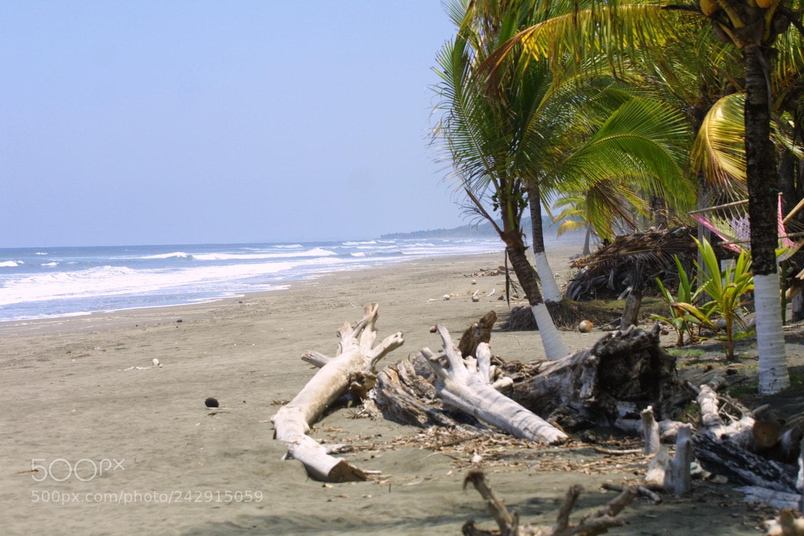 Wild beach with wind, Canon EOS D30, Canon EF 70-200mm f/4L