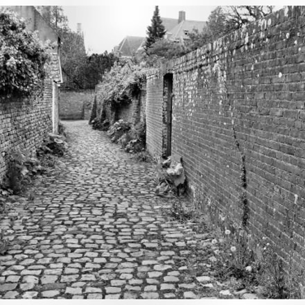 Veere old town, Canon EOS 1100D, Canon EF-S 18-55mm f/3.5-5.6 III