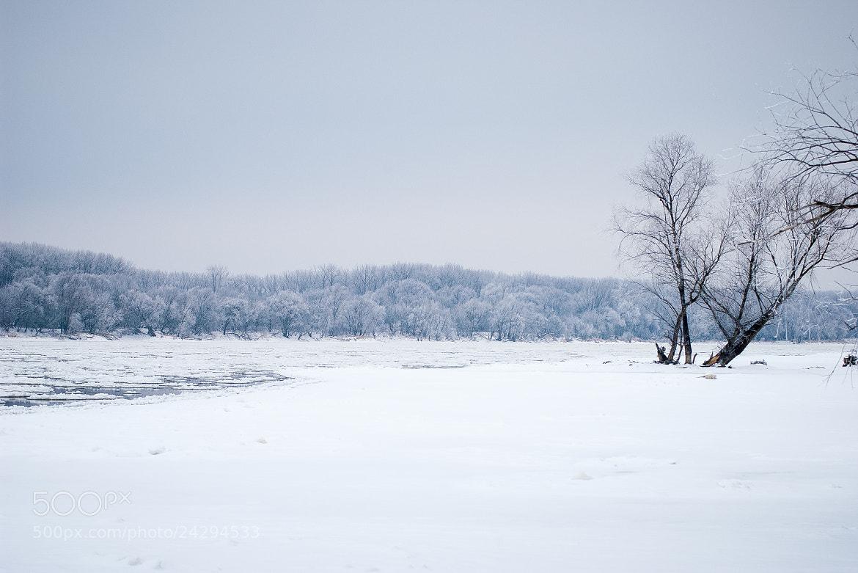 Photograph Frozen vistula by Michał Sleczek on 500px