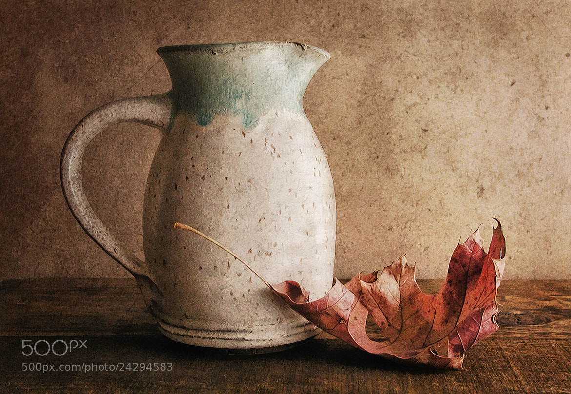 Photograph Pitcher with Leaf by Sharon Smith on 500px