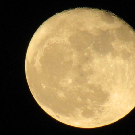 The Moon, Canon POWERSHOT SX410 IS