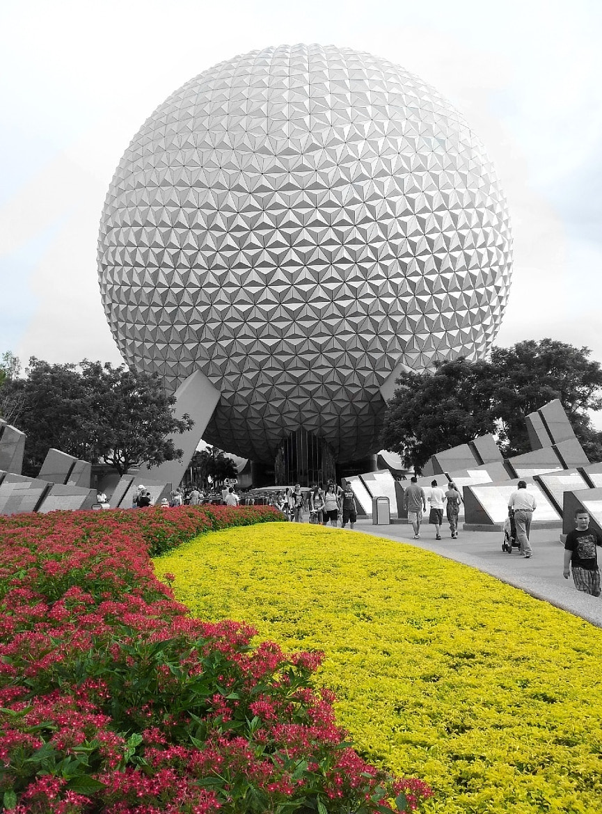 Photograph Epcot flowers by martavrdez on 500px