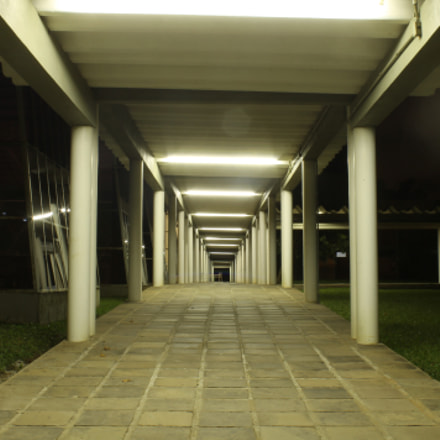 Night Photography, Canon EOS REBEL T3, Canon EF-S 18-55mm f/3.5-5.6 III