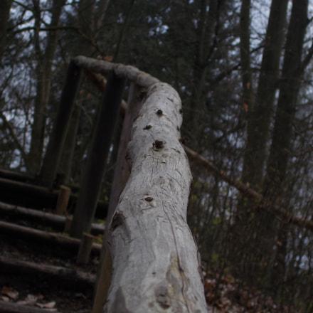 follow the handrail, Nikon COOLPIX L31