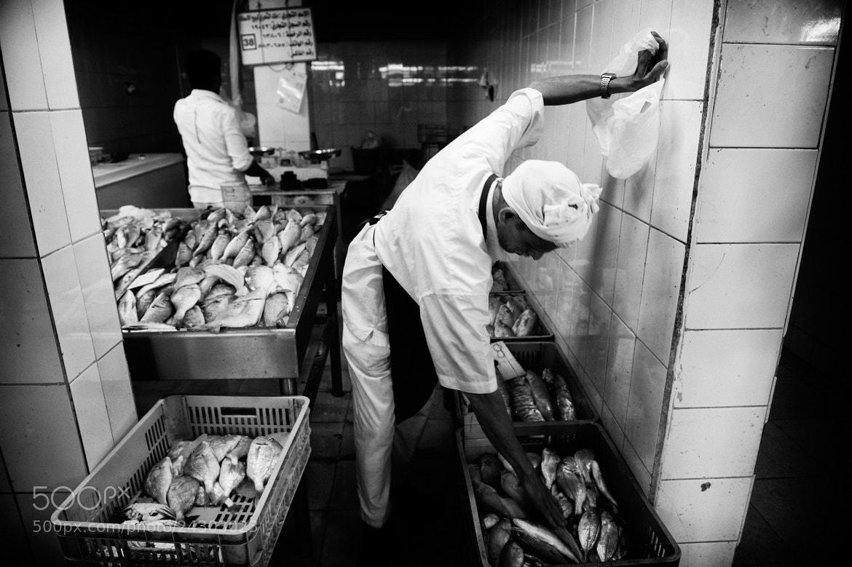 Photograph Fish Market - Doha - Qatar by Vincent Goddard on 500px