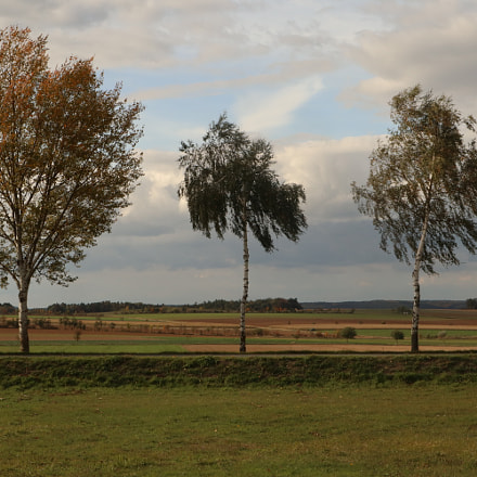 Three in the Country, Canon EOS M5, Canon EF-M 15-45mm f/3.5-6.3 IS STM