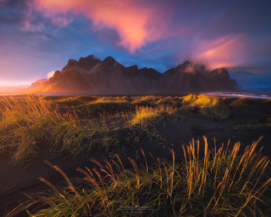 Hornset by Daniel Laan on 500px.com
