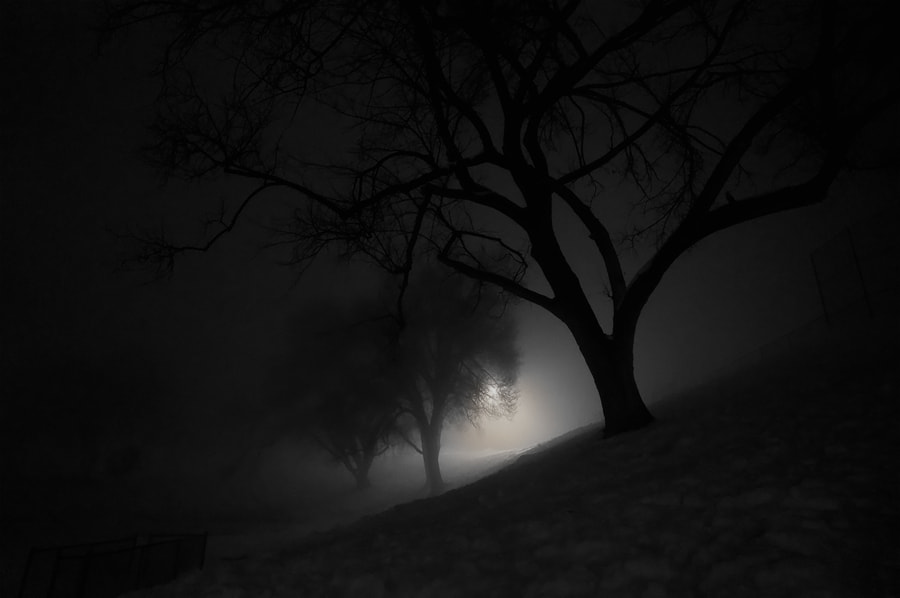 Photograph Foggy Night Walk by Chris Eaves on 500px
