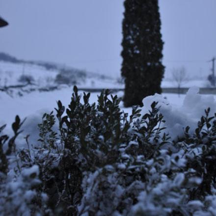 snowy day, Nikon D90, AF-S DX Zoom-Nikkor 18-135mm f/3.5-5.6G IF-ED