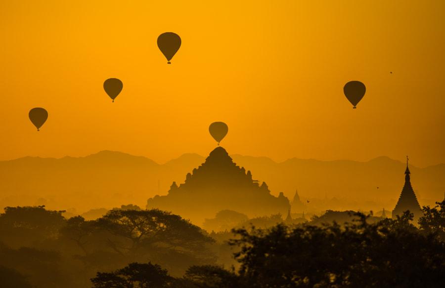 Birds of Bagan, автор — Kishan Harwalkar на 500px.com