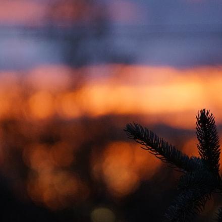 Sunset, Sony ILCA-68, Sony DT 55-300mm F4.5-5.6 SAM (SAL55300)