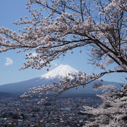 Mt.Fuji in spring, Sony ILCE-5100, Sony E 20mm F2.8