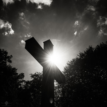 Looming Cross in the Forest