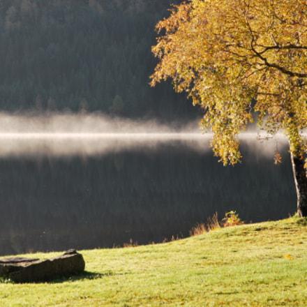 Autumn mist line, Nikon D60, Sigma 18-200mm F3.5-6.3 DC