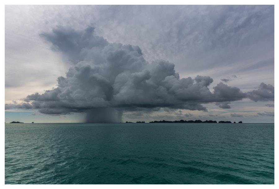 Rain, автор — JJ Z на 500px.com