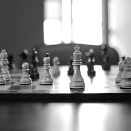 A Chess Game, Nikon D3X
