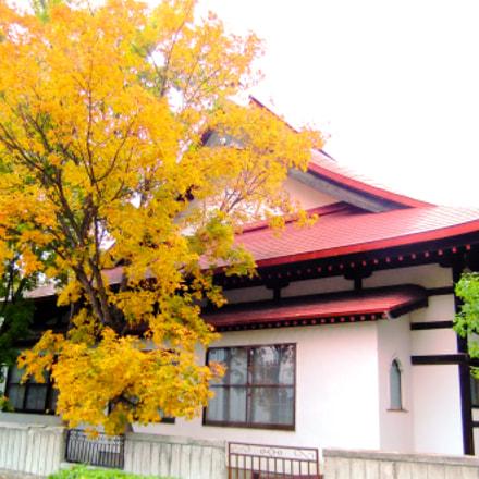 japan temple, Fujifilm FinePix F80EXR