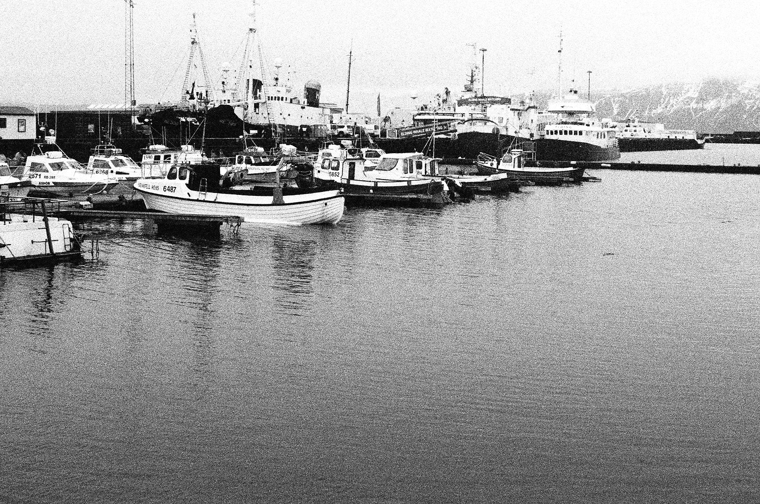 Photograph BW Reykjavic Harbor by Donevan Dolby on 500px