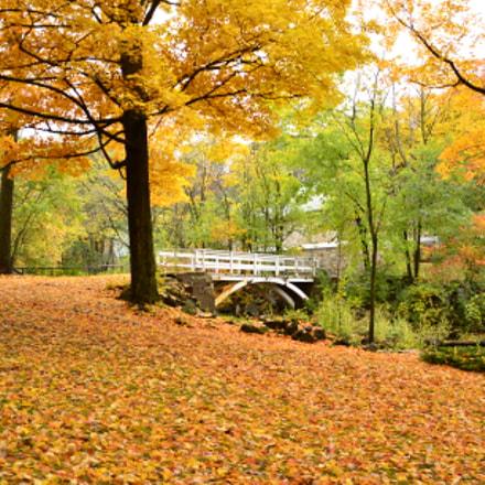 Autumn impression , Nikon D7000, AF-S DX Nikkor 18-300mm f/3.5-6.3G ED VR