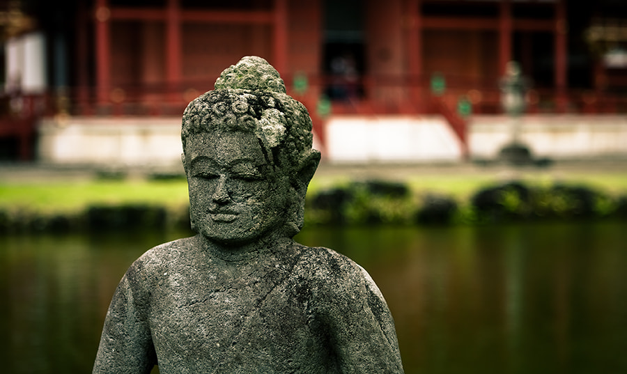 Photograph Byodo-In Buddha by Steve Bullock on 500px