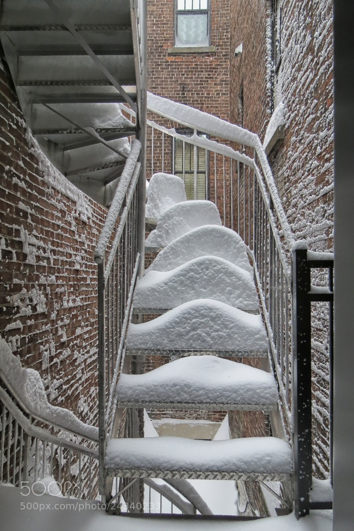 Photograph Snow Day Stairway by Everett Martin on 500px